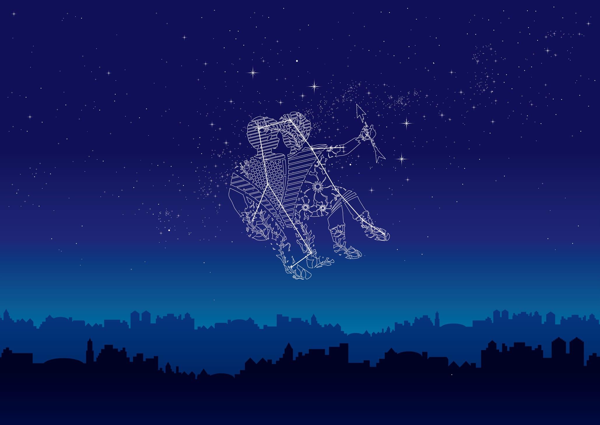 【ふたご座流星群】あなたは夜空にどんな願いを託す?