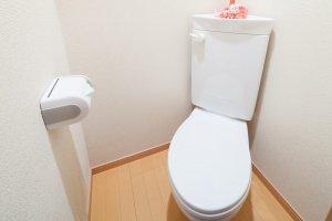 開運風水 あなたの運気アップ「運気が変わるトイレ風水」インテリア開運術