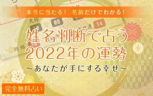 姓名判断・2022年の運勢(無料)名前・画数で占う1年後のあなた