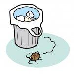 夢占い|ゴキブリの夢の意味は?もうすぐ悪いことが起こる暗示?