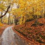 秋分の日は開運日!スピリチュアルな意味、運気アップの開運行動