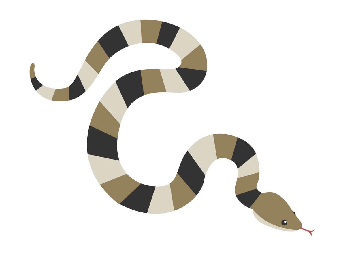 夢占い|蛇の夢の意味は?夢の中でヘビをどう感じた?吉夢or凶夢どっち?